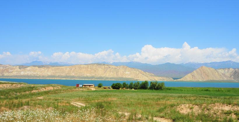 Toktogul - Kirgistan