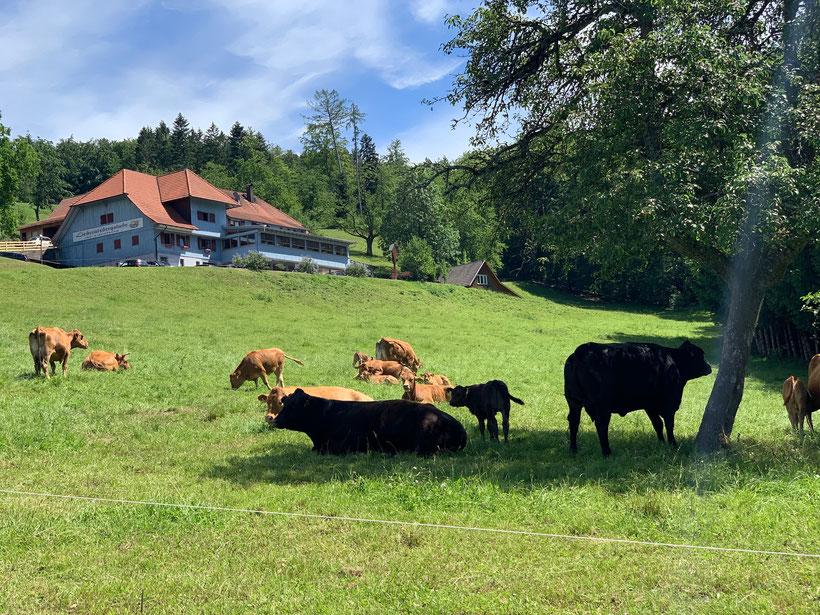Landgasthof Lieberatsberg in Dölinbach im Schwarzwald