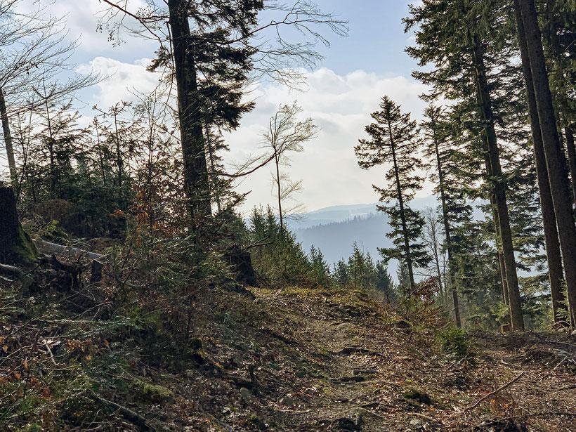 Balzer Herrgott Runde Schwarzwaldwanderung