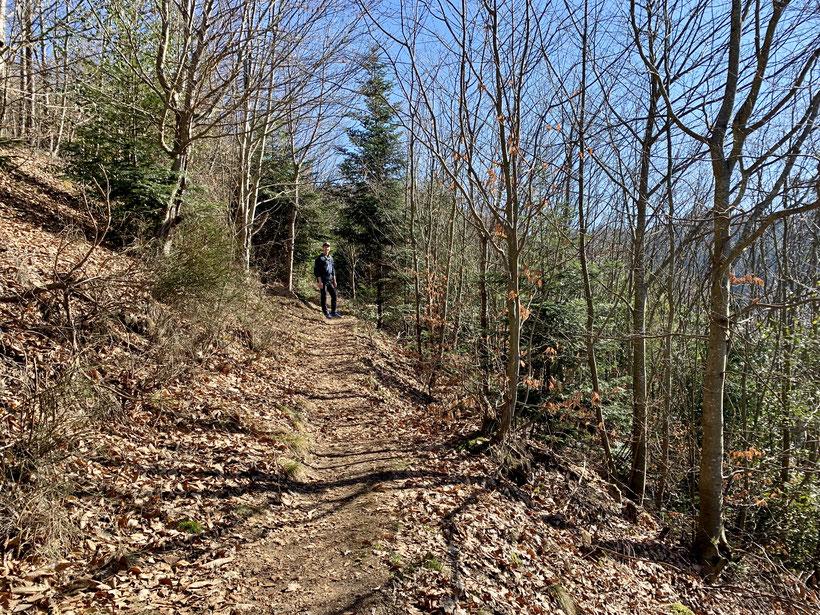 Wanderpfad im Schwarzwald bei Gengenbach