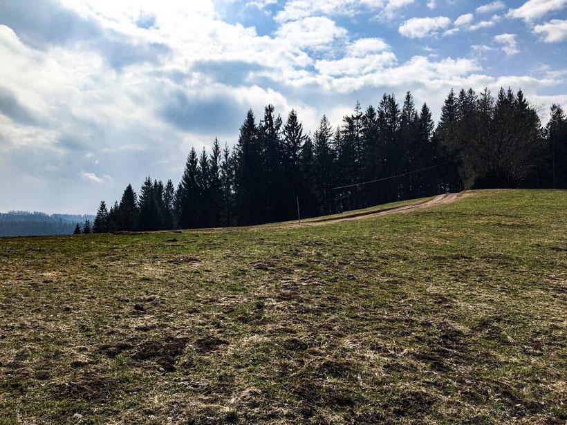 Neukircher Brend Schwarzwaldwanderung bei Furtwangen