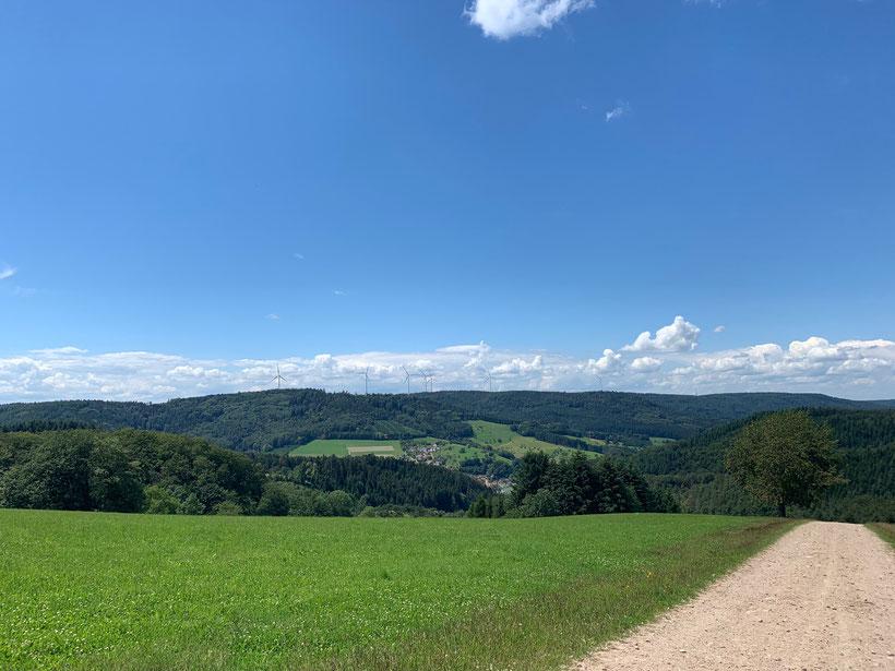 Herrlicher Blick auf Dörlinbach im Schwarzwald