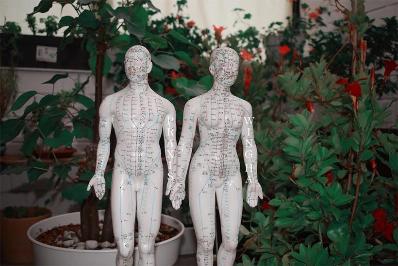 "<img src=""meridian-figuren-praxis-wing-ha.jpg"" alt=""Meridian Figuren mit Pflanzen im Hintergrund"">"