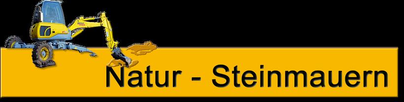 Überschwemmung Hangrutsch Strassenreparatur Mauersanierung Maschinist Vermietung Baumaschinenführer Baggerfahrer Schreitbaggerfahrer Überbauung Sicherheitswand Sicherheitsmauer Stützmauer  Adi Krig spezielle Bagger kleiner Bagger leichter Bagger  Alpweide