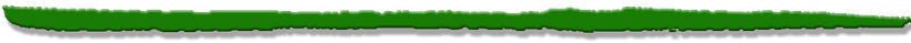 Schnellwechlser Tinkwasser Quellwasser Alpstrassen Alpwege Maschinenwege Tiefbau Schreitbagger-Einsätze Spezialeinsätze Schwenklöffel Humuslöffel Tieflöffel Zahnlöffel Grablöffel Dieseltank Magnete Kübelbrecher Betonverdichter Mischschaufel Holzgreifer Ti