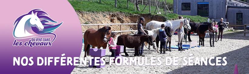 Programme de séances pour apprendre et pratiquer l'équitation plaisir