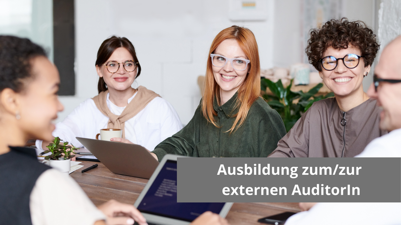 Ausbildung externer Auditor