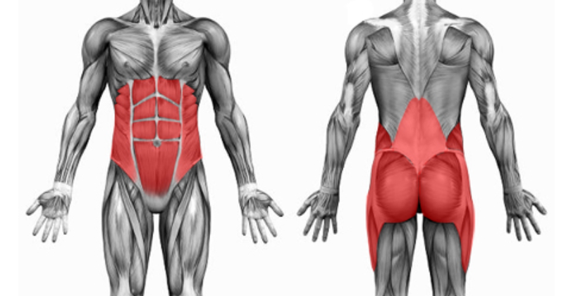 core exercises lower back