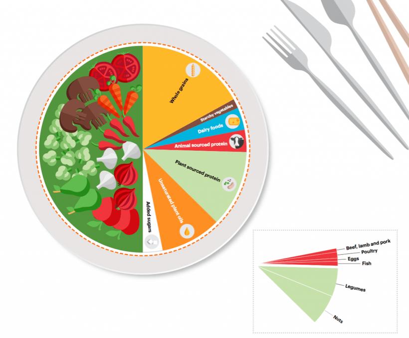 Grafik: Planetary health diet. Der Speiseplan für eine gesunde und nachhaltige Ernährung besteht größtenteils aus Obst und Gemüse, Vollkornprodukten, Hülsenfrüchten und ungesättigten Fetten (EAT-Lancet Commission, 2019)