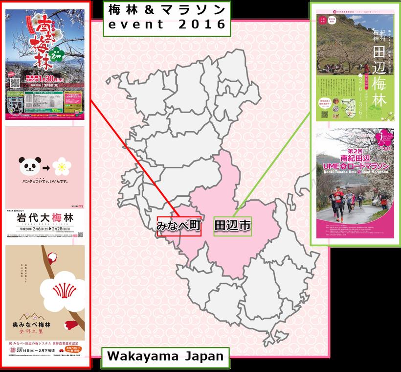 梅林&マラソンevent【和歌山2016】