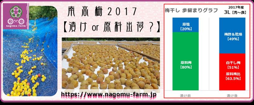 漬け or 原料出荷? 【南高梅2017】  和×夢 nagomu farm