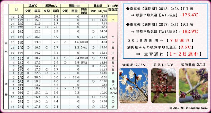 戌年の梅【2018年作柄検証】 和×夢 nagomu farm