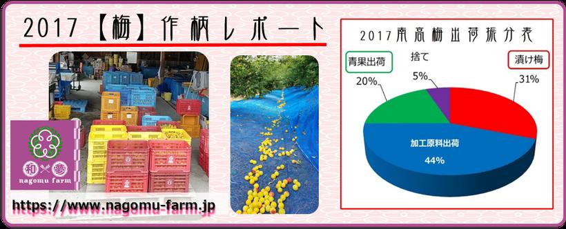 2017 【梅】作柄レポート  和×夢 nagomu farm