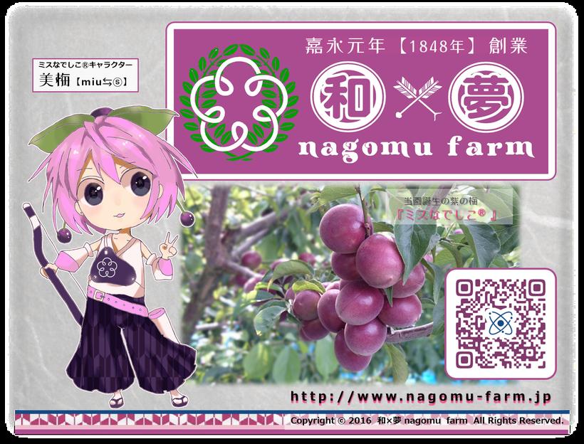 美梅【miu ⇆(s)】 和×夢 nagomu farm