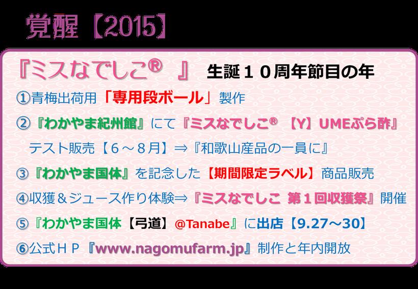 『ミスなでしこⓇ』生誕10周年 play back 10 year 【Y】ume記録 覚醒【2015】