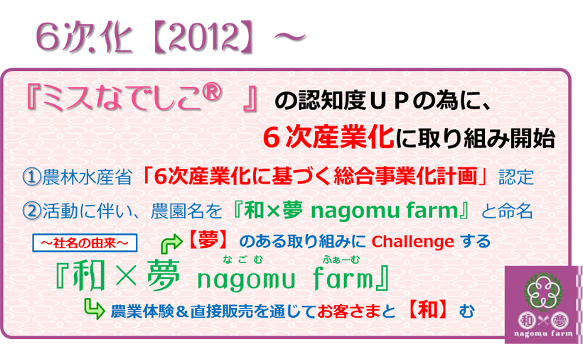 『ミスなでしこⓇ』生誕10周年 【Y】ume記録 6次化【2012】~