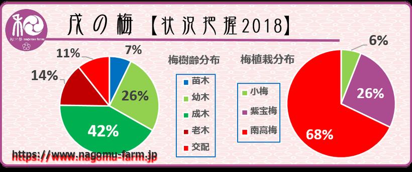 戌の梅【状況把握2018】データ化  和×夢 nagomu farm