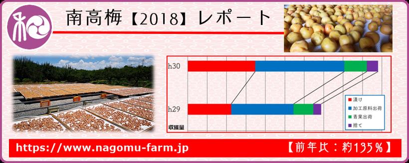 南高梅レポート 【2018】  和×夢 nagomu farm