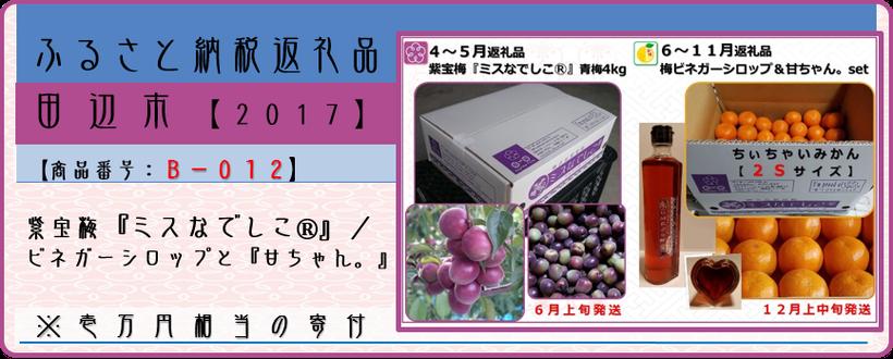 ふるさと納税返礼品【田辺市2017】紫宝梅ver.
