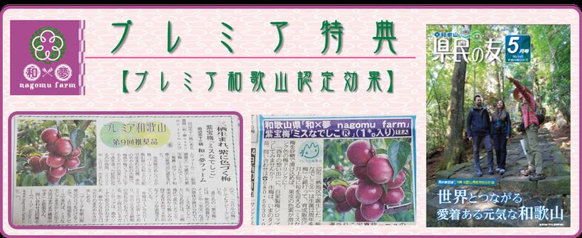 プレミア特典【プレミア和歌山認定効果】アイコン  紫宝梅『ミスなでしこⓇ』 和×夢 nagomu farm
