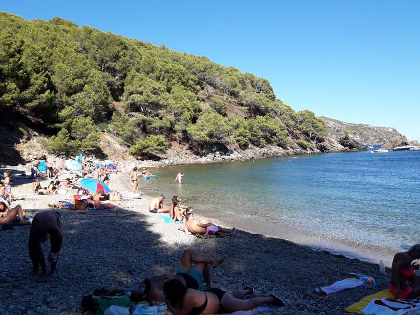 mer, plage, baigneurs, soleil, bronzage