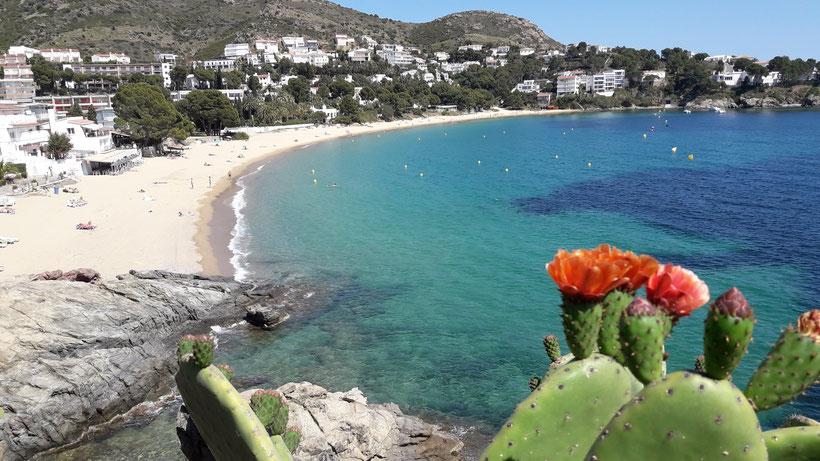 Criques, plage, sable fin, mer,  sauvage, espagne, roses,