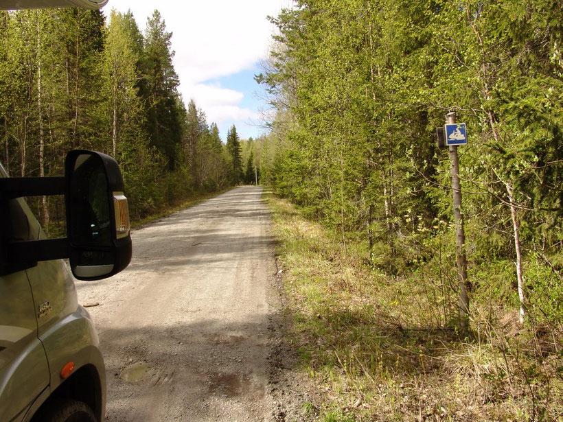 Auf der Suche nach dem Natur-Campingplatz..10km durch den Wald