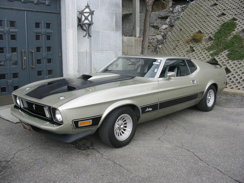 Mustang mach1 '73   ¤