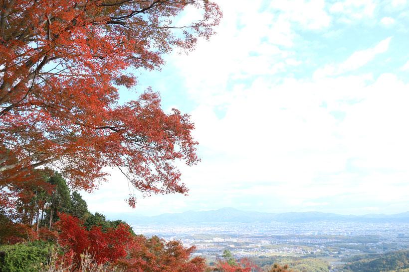 京都市下京区の心療内科、女医のいるメンタルクリニック、秋の風景、紅葉、見晴らしのよい丘