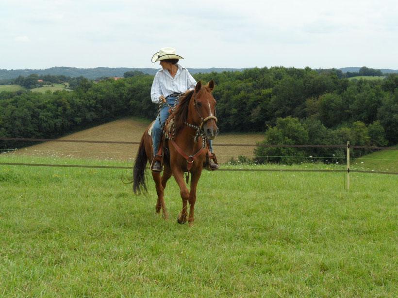 cavalière western et cheval en bosal