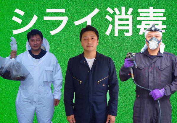 シライ消毒 3人の作業員