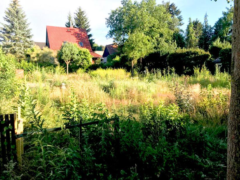 neues projekt für bauzeit berlin als qualitätssichernde bauherrenbegleitung