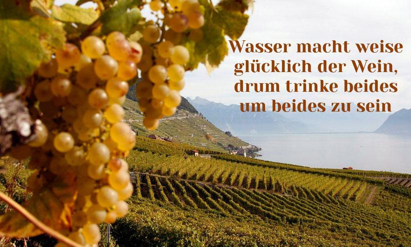 Wasser macht weise, glücklich der Wein, drum trinke beides um beides zu sein