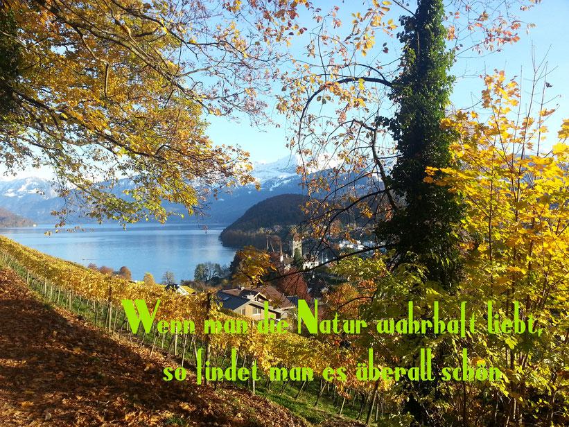 Wenn man die Natur wahrhaft liebt, so findet man es überall schön