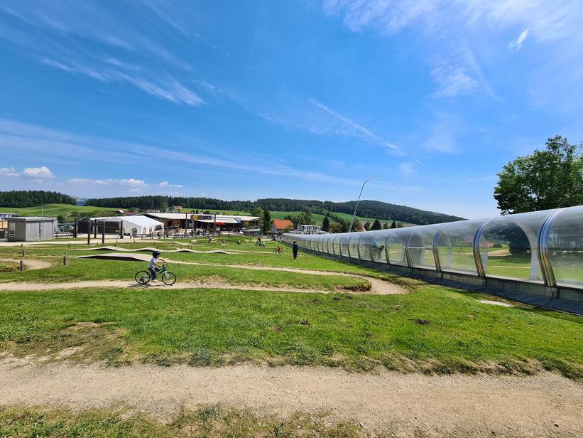 Wex-Trails Mini Biketrail