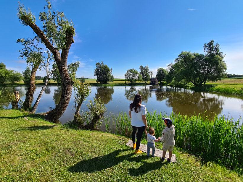Rundwanderung im Waldviertel mit vielen Seen