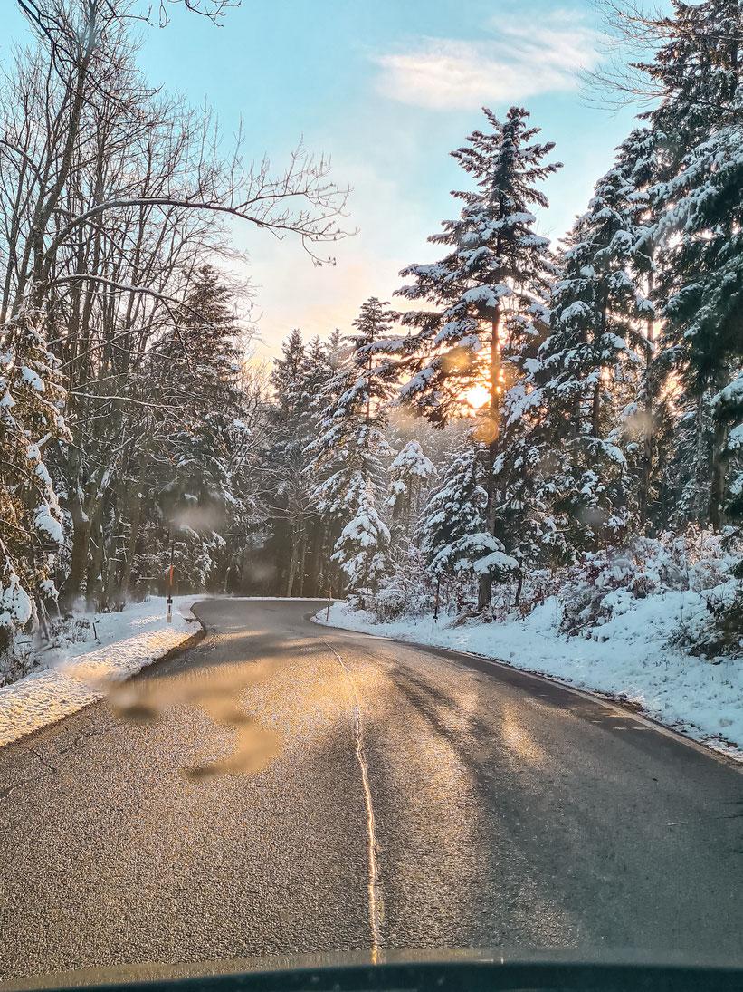 Naturpark Hohe Wand Niederösterreich Anfahrt