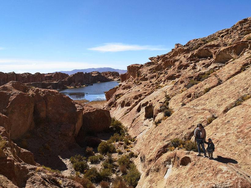 Süßwassersee in der Salzwüste auf ca. 3.800 Meter