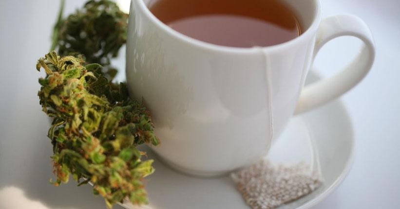 Wie man Cannabis-Tee aus zerkleinertem Cannabis macht