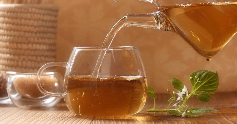 Cannabis Tee (Tisane?)