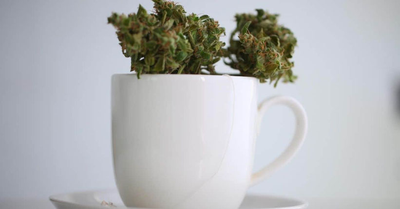 Wie man Cannabis-Tee mit Cannabisöl oder Canna-Butter macht