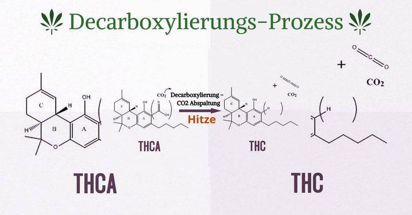 Cannabis Tee nicht ohne decarboxyliertem Cannabis