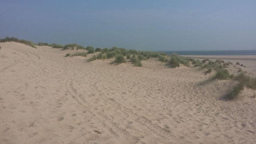 Maasvlakte, Niederlande