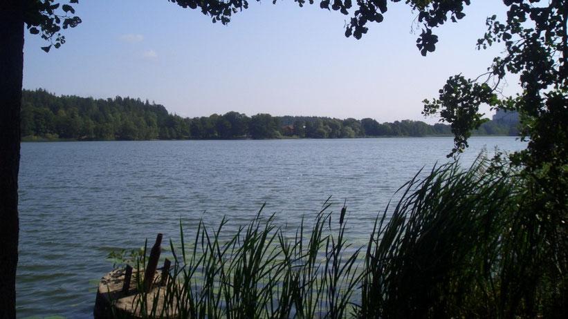 Rönningesjön, Schweden
