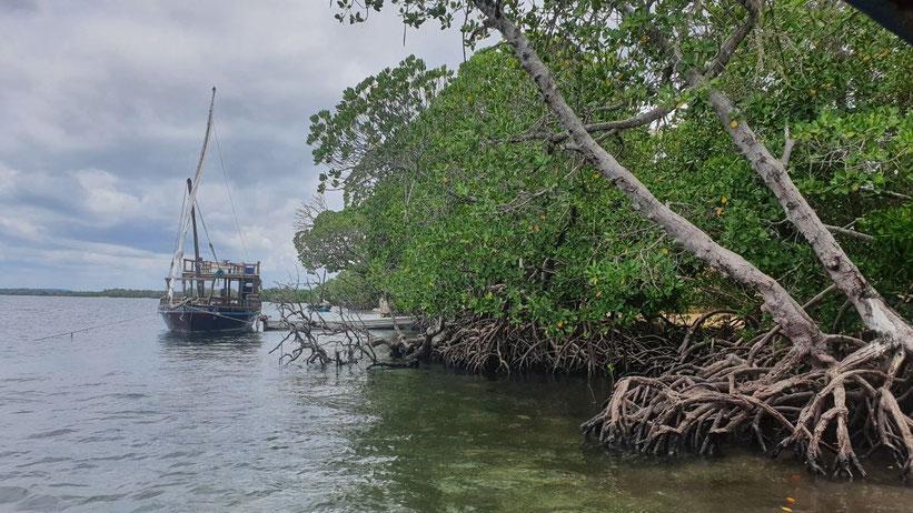 Bootstour durch die Mangroven von Watamu, Kenia
