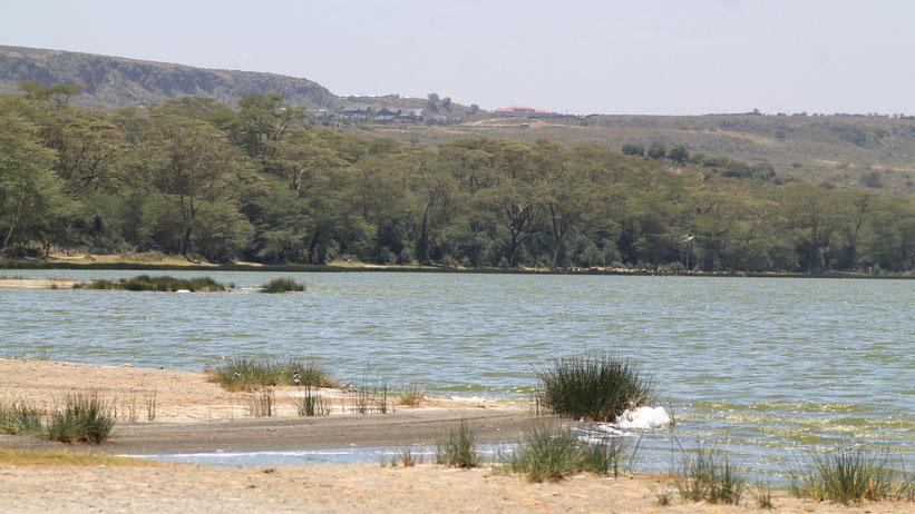 Elementaita-See (Lake Elementaita), Kenia
