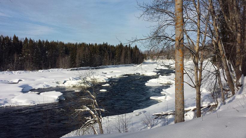 Mårdseleforsen Naturreservat, Schweden