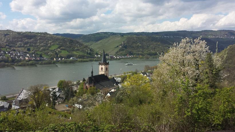 Burgenrundfahrt im Rheingau, Hessen / Rheinland-Pfalz