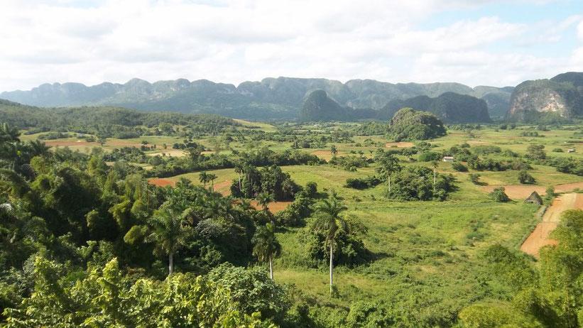 Führung über die Tabak-Felder im Valle de Viñales, Kuba