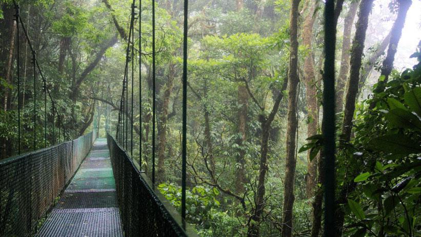 Hängebrücken-Park Selvatura, Costa Rica